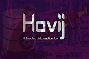 Havij Pro 1.17 Crack + License Key 2021 [Latest Version] Free Download